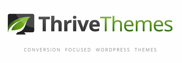 Tools the Pros Use - Thrive Themes - daniel bussius