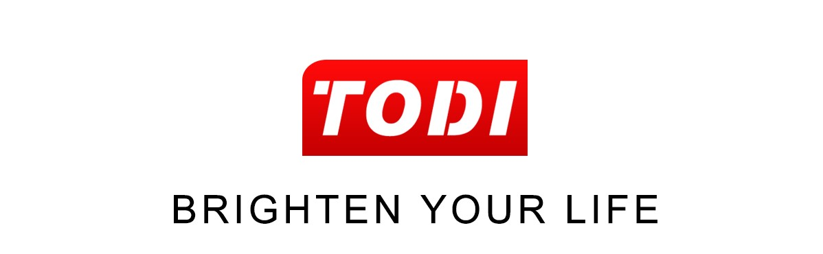 Todi ring light logo a recommended video tool listed in Tools the PRos used guide for 2021 by Daniel bussius